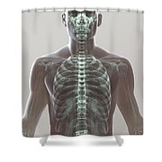 X-ray Skeleton Shower Curtain