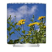 Yellow Buttons Shower Curtain