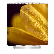 Yellow Flower Macro Shower Curtain