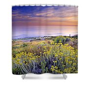 Yellow Flowers At The Sea Shower Curtain