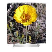 Yellow Wildflower Shower Curtain