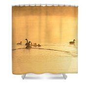 You Better Get Your Ducks In A Row Shower Curtain
