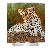 Young Leopard Shower Curtain