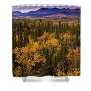 Yukon Gold - Fall In Yukon Territory Canada Shower Curtain