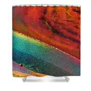 Agate Microworlds 1 Shower Curtain