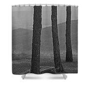 Blue Ridge Mountains - Virginia Bw 8 Shower Curtain