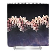 Human Dna Shower Curtain