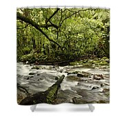 Jungle Stream Shower Curtain