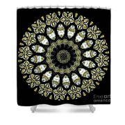 Kaleidoscope Ernst Haeckl Sea Life Series Shower Curtain