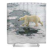 Polar Bear Crossing Ice Floe Shower Curtain