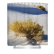 White Sands Shower Curtain
