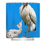 Wood Storks Shower Curtain