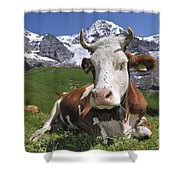 100205p182 Shower Curtain