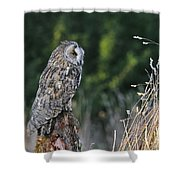 100205p264 Shower Curtain