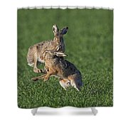 101130p210 Shower Curtain