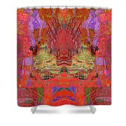 1074 Abstract Thought Shower Curtain