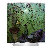 Tropical Fish And Coral Shower Curtain