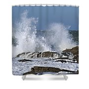 110111p194 Shower Curtain