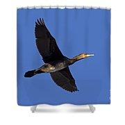 110307p047 Shower Curtain