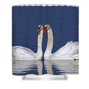 110307p052 Shower Curtain