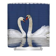 110307p053 Shower Curtain