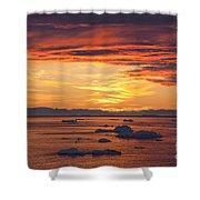 110307p086 Shower Curtain