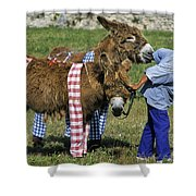 110307p164 Shower Curtain