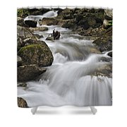 110414p104 Shower Curtain