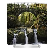 110414p155 Shower Curtain
