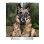 110506p117 Shower Curtain
