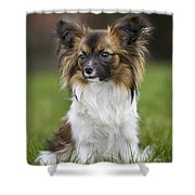 110506p145 Shower Curtain