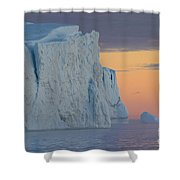 110613p175 Shower Curtain
