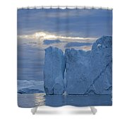110613p180 Shower Curtain