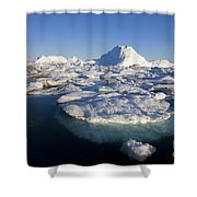 110714p242 Shower Curtain