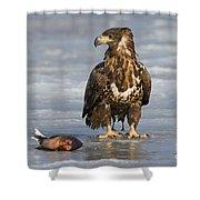110714p303 Shower Curtain