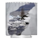 111130p113 Shower Curtain
