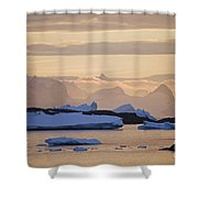 111130p142 Shower Curtain