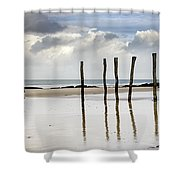111230p036 Shower Curtain