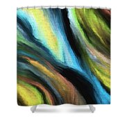 116a Shower Curtain