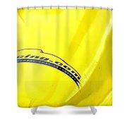 11racing 24322 Shower Curtain