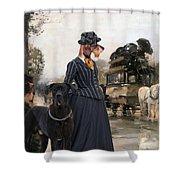 Dachshund Art Canvas Print Shower Curtain