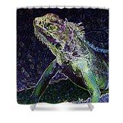 Abstract Cayman Iguana Shower Curtain