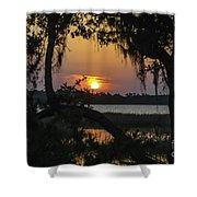 Lowcountry Spanish Moss Sunset Shower Curtain
