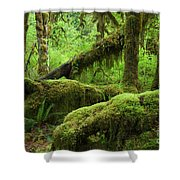 Olympic National Park Shower Curtain