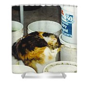Petey Shower Curtain