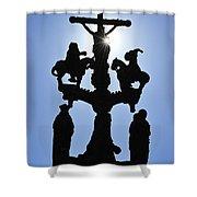 120118p366 Shower Curtain