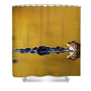 120206p199 Shower Curtain