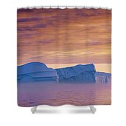 120223p180 Shower Curtain