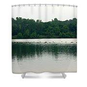 1254c Shower Curtain