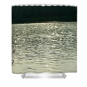 1259c Shower Curtain